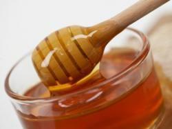ALLOSANFANE: La corte di giustizia europea vieta la vendita di miele inquinato da polline transgenico