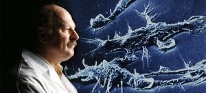 Il biofilm ovvero una comunità strutturata di batteri