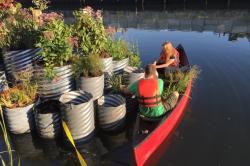La fitodepurazione con un oasi galleggiante sul canale