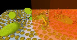 Nanodischi microporosi d'oro combinati con luce ultravioletta